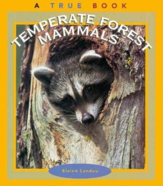 Temperate Forest Mammals