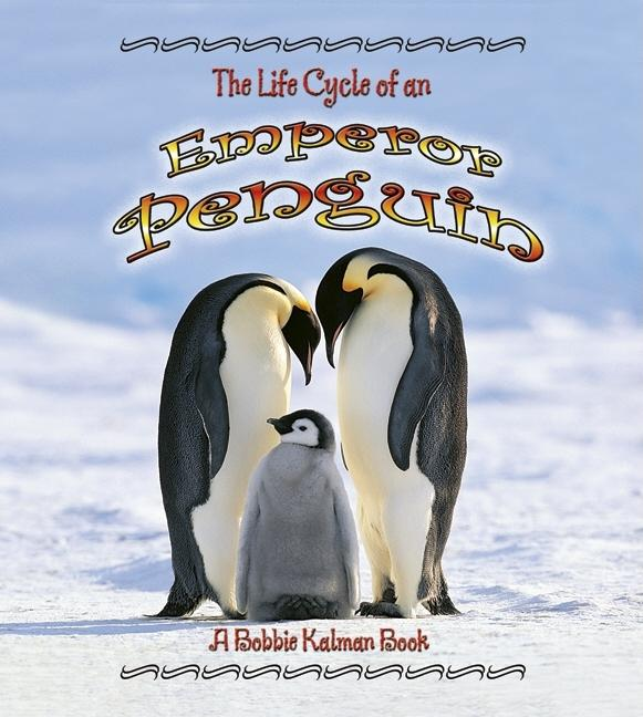 The Life Cycle of a Emperor Penguin