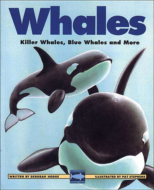 Whales: Killer Whales, Blue Whales and More