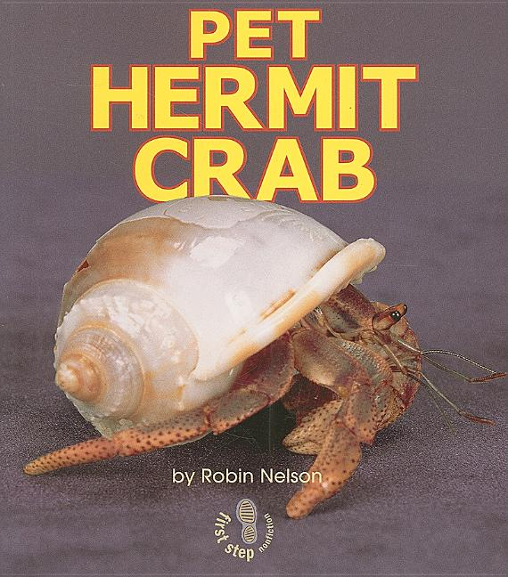 Pet Hermit Crab