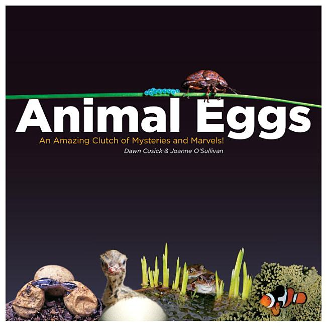 Animal Eggs: An Amazing Clutch of Mysteries & Marvels!