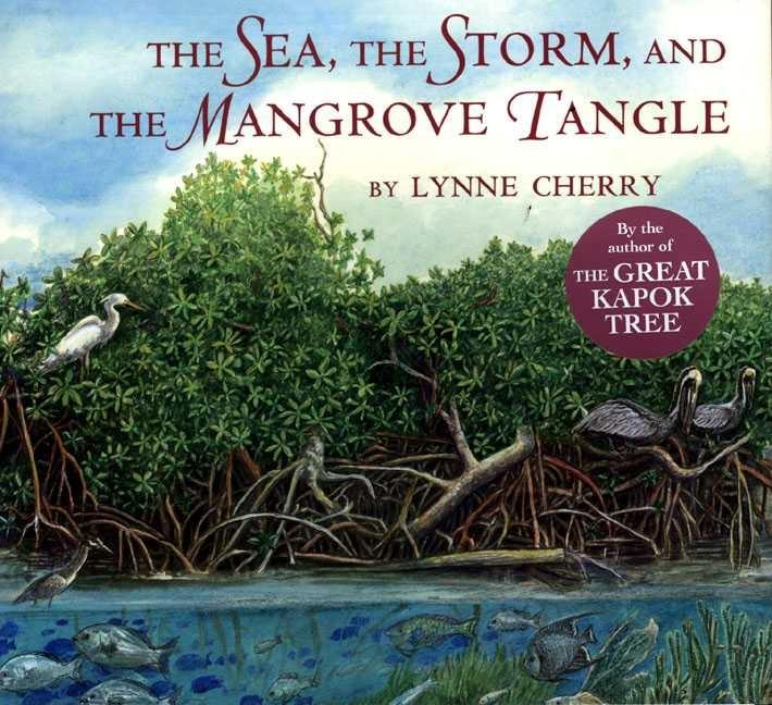 The Sea, the Storm and the Mangrove Tangle