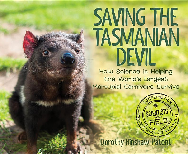 Saving the Tasmanian Devil: How Science Is Helping the World's Largest Marsupial Carnivore Survive