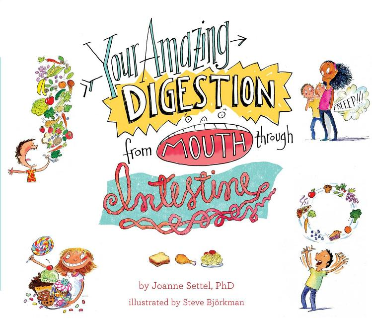 Your Amazing Digestion from Mouth Through Intestine