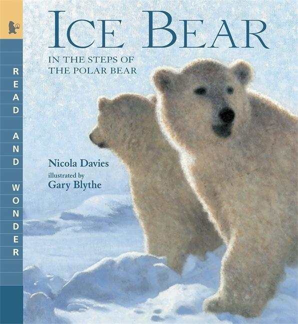 Ice Bear: In the Steps of the Polar Bear