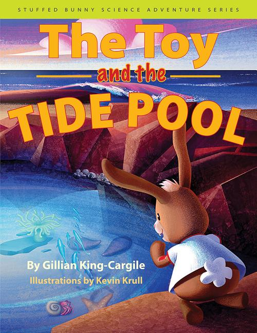 The Toy and the Tide Pool