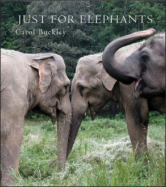 Just for Elephants