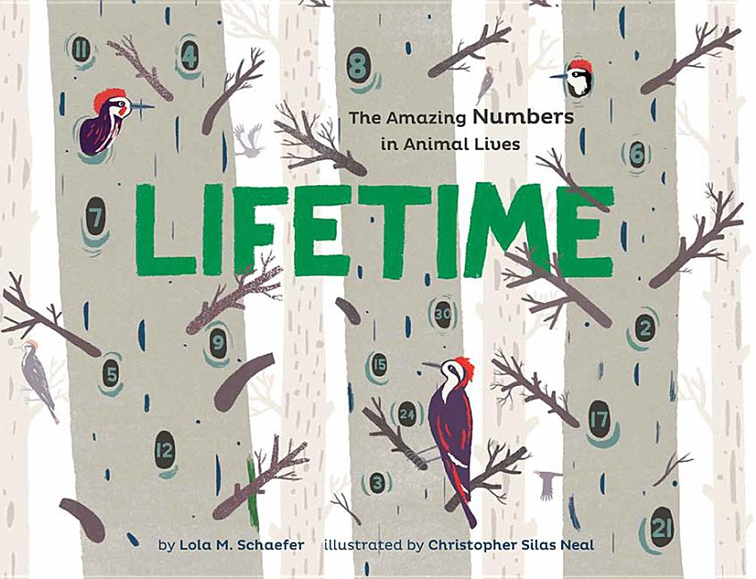 Lifetime: The Amazing Numbers in Animal Lives